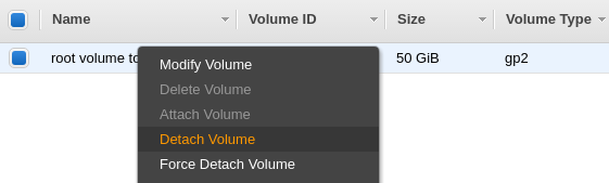 Detach original root volume